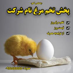 طرح برچسب و لیبل پخش تخم مرغ
